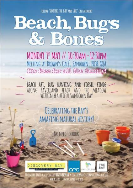 Beach, Bugs and Bones event Isle of Wight