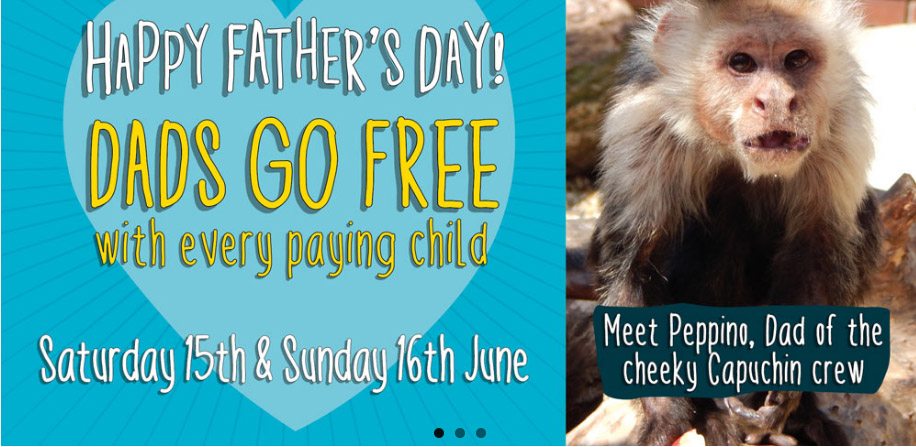 Dads Go Free at the Monkey Haven - isleofwight com