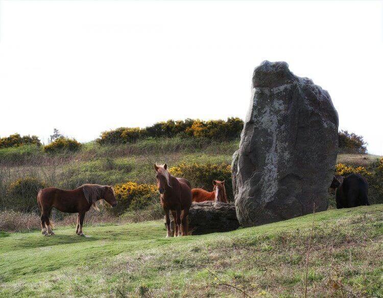 Long Stone Isle of Wight