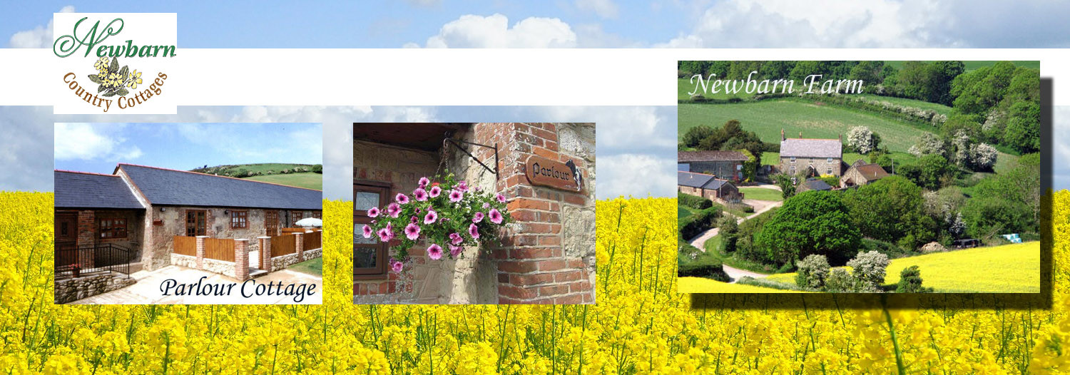 newbarn country cottages farm holidays self catering isle of wight