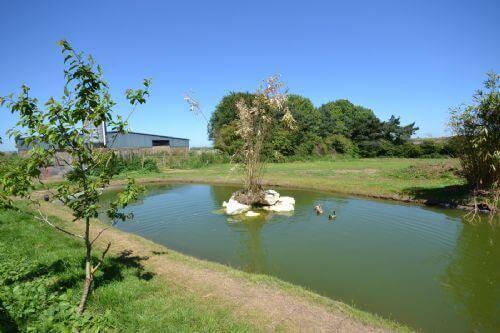 The Squeak Godshill  Isle of Wight