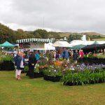 Wolverton Manor Garden Fair Isle of Wight 3