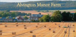 alvington-manor-farm-isle-of-wight-header (1)
