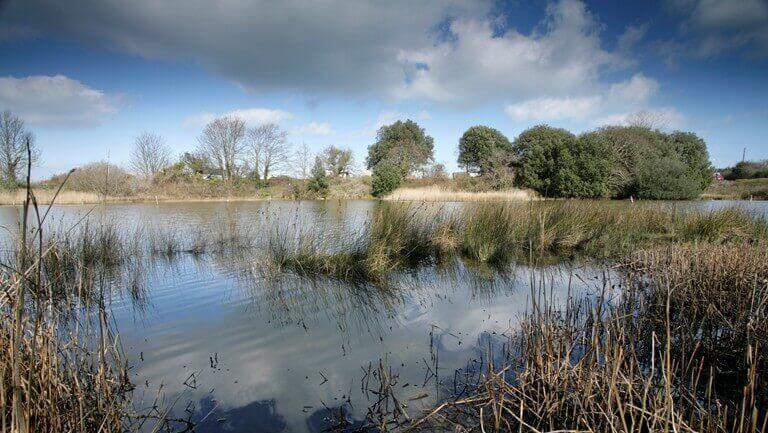 bembridge down and brading marsh walk