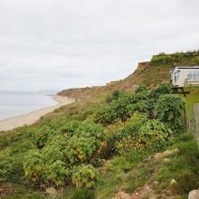 Grange Farm 6-8 Berth Caravans, Brightstone, Isle of Wight