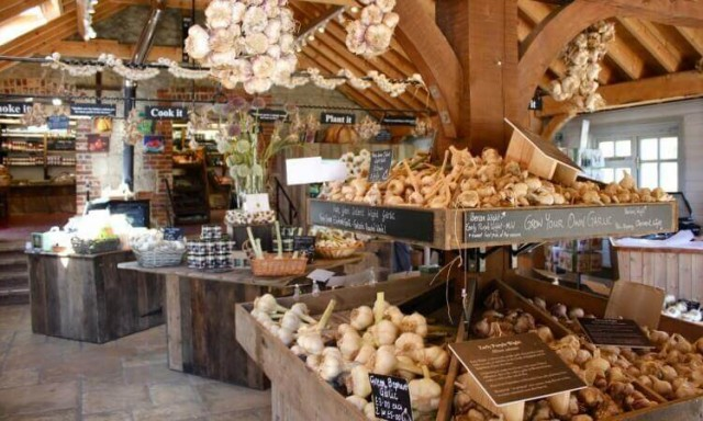 The Garlic Farm, Newchurch, Isle of Wight