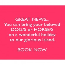 BRING YOUR BELOVED DOG/S & HORSE/S on holiday with you to our glorious Island!