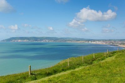 Bembridge and Culver Downs – wonderful wildlife walk
