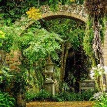 SPOTLIGHT on Ventnor Botanic Gardens