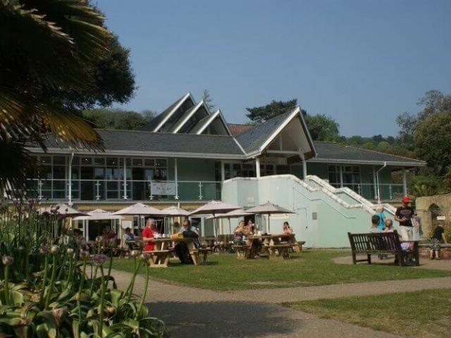 Ventnor Botanic Garden, Undercliff Drive, Ventnor, Isle of Wight