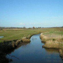 Brading & Bembridge Marsh and Down Walk