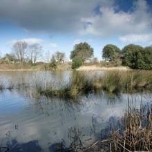 Bembridge Down and Brading Marsh – 7 Miles