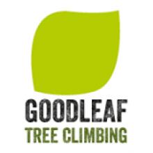Goodleaf Tree Climbing