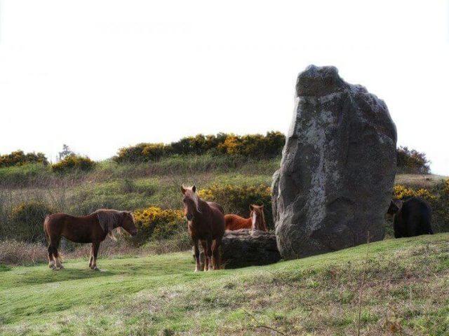 The Long Stone, Mottistone, Isle of Wight