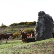 The Long Stone, Mottistone, Isle of Wight