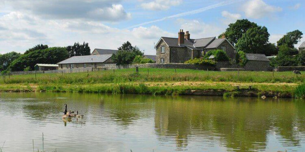 Nettlecombe Farm Gallery Page