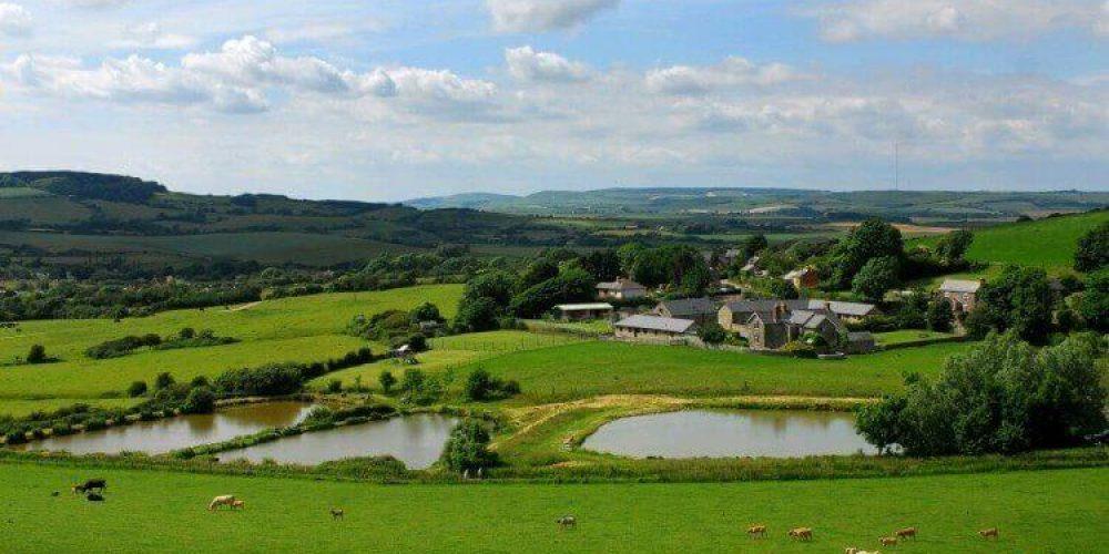 Spotlight On – Nettlecombe Farm