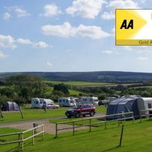 GOLD AWARD for Orchards Holiday Park