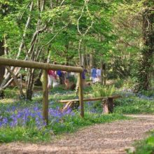 Robin Hill Adventure Park, Isle of Wight