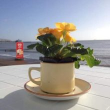 Strollers Beach Cafe, Sandown, Isle of Wight