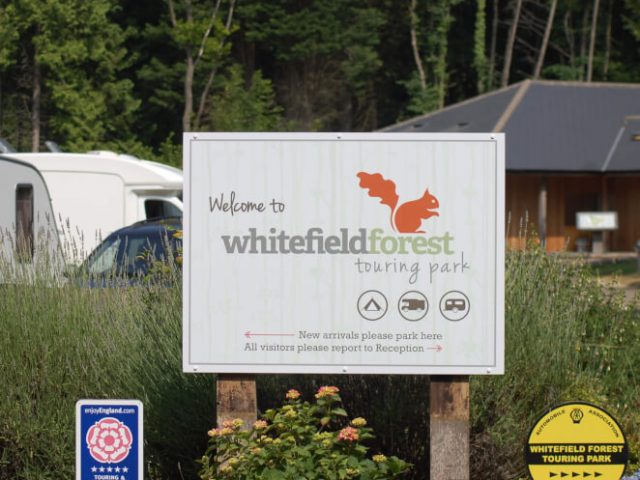 Whitefield Forest Touring Park, Brading, Isle of Wight