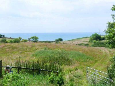 Bank End Farm Ventnor Isle of Wight