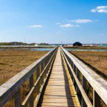 Enjoy the estuary… Newtown walk