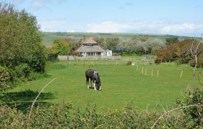 dinosaur farm holidays isle of wight