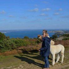 West Wight Alpacas