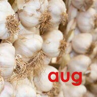 The Isle of Wight Garlic Festival – August