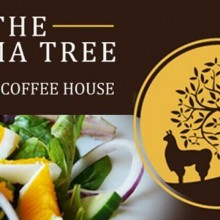 The Llama Tree Bistro and Coffee House, Wellow, Isle of Wight