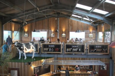 The Mad Cow Co Tapnell Farm Isle of Wight