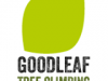 Goodleaf Tree Climbing