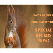 DON'T BE NUTS! BOOK ONE OF THESE FANTASTIC SPECIAL OFFERS NOW!