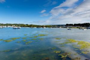 Bembridge Harbour Isle of Wight