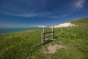 Brighstone Down Isle of Wight