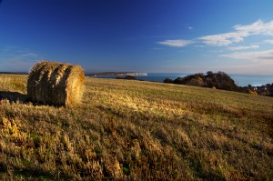 St Boniface Down Isle of Wight