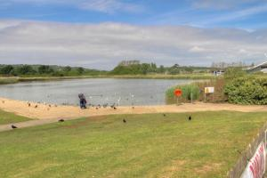 The former boating lake at Sandown is now a haven for birds