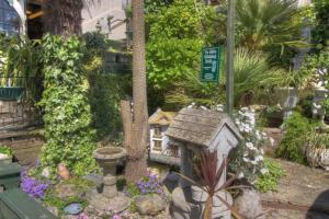 The award winning garden at Montpelier in Sandown